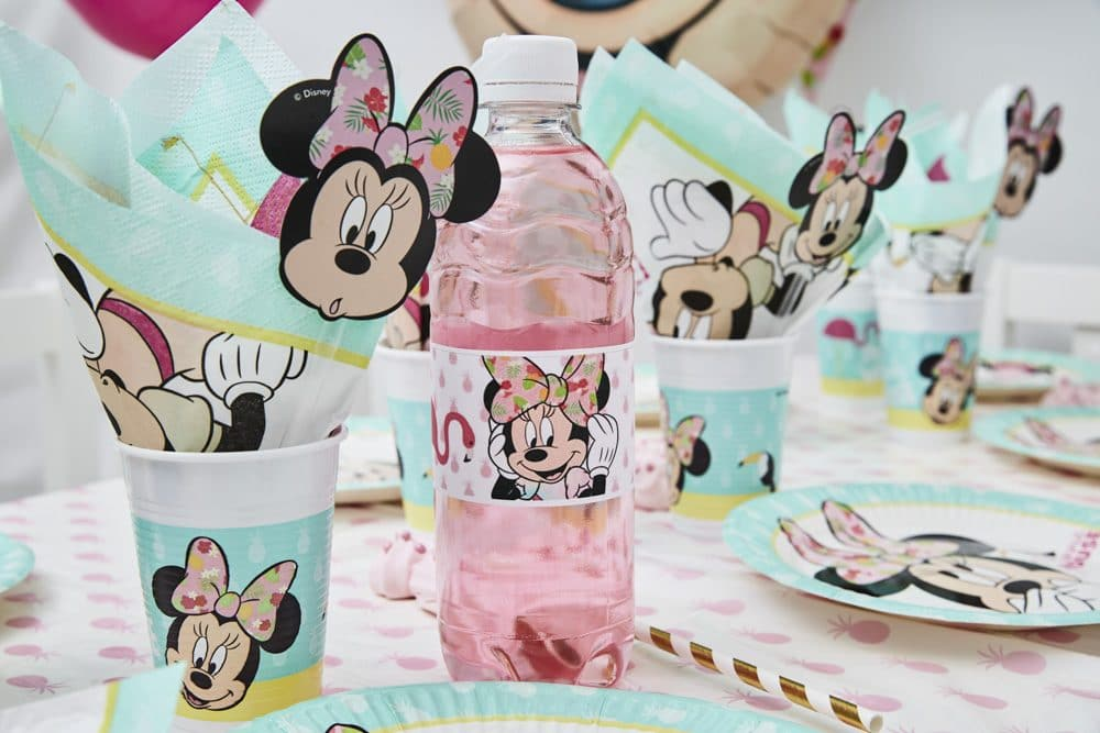 minnie mouse 07