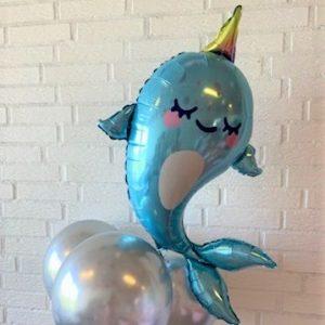 ballon box narhval