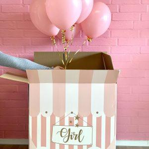 gender ballon box